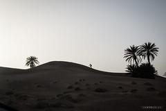 Foum Takkat © Sophie Bigo - SBGD 2018-7 (SBGD_SophieBigo) Tags: photography artdirector freelance sophiebigo morocco maroc trip traveler travelphotography trek desert sahara