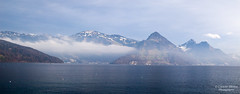 Nidwalden (Cristofer Martins) Tags: nidwalden switzerland lake landscape nature wildlife blue winter alps coth5