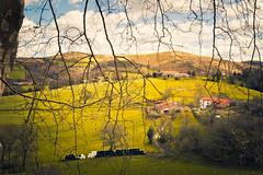 Isturitz - Lapurdi (Ro Cafe) Tags: landscape countryside basquecountry isturitz france nikkor2470f28 nikond600