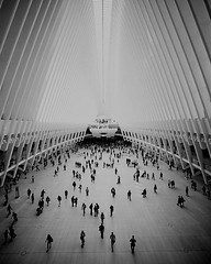 ThE OculuS   NeW YorK (rocami19) Tags: leica dlux 5