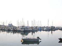 Embarcaciones en el puerto de Pobra do Caramiñal.(Coruña-España) (Los colores del Barbanza) Tags: escalerilla mar puerto barcos azul craft ladder sea harbor boats blue embarcaciones pobra do caramiñal barbanza coruña galicia españa spain
