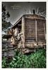 Abandoned (albertomazzei1) Tags: abandoned stilllife trattore cingoli cingolato trattoreacingoli vecchio old dismissed tractor albertomazzei