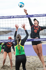 PAC-12 North Invitational 2018-FT4I4100 (Pacific Northwest Volleyball Photography) Tags: beachvolleyball ncaa pac12 pac12bvb