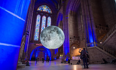 blue moon (paul hitchmough photography 2) Tags: blue cathedral moon art luna religion people candid paulhitchmoughphotography nikond4s nikonphotograhy nikon20mm wideangle liverpool uk