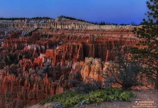 Blue Hour at Sunrise Point, Bryce Canyon National Park, Utah