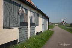Fake horses (PaulHoo) Tags: architecture landscape nature mill fujifilm fuji x70 2018 spring sky painting farm exterior horses
