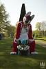 _DSC0230 (MM Furry Photo) Tags: furry fursuit fursuiting elfia beat tux dog fox vulpine canine toony multiplecharacters fullsuit partial haarzuilens utrecht nederland nl