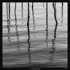 Erratic Squiggly Poles (Ilan Shacham) Tags: abstract minimalism squiggly erratic lines shape form graphic black white bw blackandwhite fineart fineartphotography square water reflection sea pole stick beach bordeaux capferret france