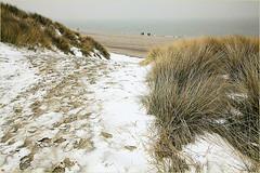 Descente vers la plage, De Banjaard, Kamperland, Noord-Beveland, Zeelande, Nederland (claude lina) Tags: claudelina nederland hollande paysbas zeelande zeeland merdunord noordzee plage dune beach debanjaard kamperland noordbeveland oyat