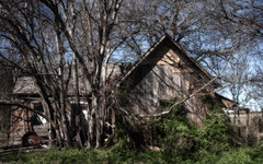 Abandoned (Explored March 29, 2018) (Anne Worner) Tags: abandoned farmhours neglected old wooden siding trees porch ivy overgrown jonah texas architecture building home house anneworner shadows dappled