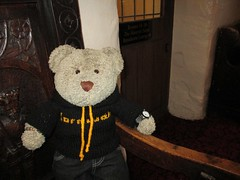 Anuvver pikchur of me hoodie (pefkosmad) Tags: tedricstudmuffin teddy ted bear cute cuddly animal toy stuffed soft plush fluffy holiday week holibob cottage cornwall bodmin cardinham westcountry westsidecottage daysout trips touring tourist tourism adventures