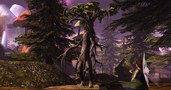 Mr. Ent (Osiris LeShelle) Tags: secondlife second life avilion medieval fantasy roleplay forest ent meeting fae landscape hi