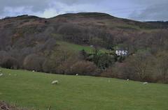 Glyndyfrdwy 030418 - DSC_0218 (Leslie Platt) Tags: straightened denbighshire llangollenrailway glyndyfrdwy deevalley riverdee