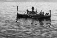 Luzu malta (alicejack2002) Tags: malta valletta boat oars