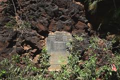 Menehune ditch (heartinhawaii) Tags: menehuneditch plackard waimea kauai menehune ancient interesting historic ancientagriculture nikond3300 landmark