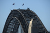 DSC_8836 (Hong Z) Tags: sydney australia nikond700 28300mmf3556 harbour bridge""