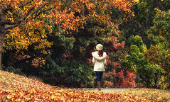 breathe into your heart (Bec .) Tags: bec canon 80d 18135mm adelaide southaustralia mtlofty adelaidehills autumn lady woman walking autumnleaves beautiful serene ripmark myfriend breatheintoyourheart mourning