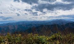 #101 View from Odake san (tokyobogue) Tags: tokyo japan hiking nikon nikond7100 d7100 sigma sigma1750mmexdcoshsm mountain mountains mitakesan odakesan nokogiriyama sky trees nature 365project
