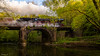Full steam ahead (Eifeltopia) Tags: steamengine dampfspektakel2018 dampflokomotive steamlocomotive bridge brücke südeifel bogen kyll stream river fluss spring frühling towardsthesun forest rheinlandpfalz rhinelandpalatinate eisenbahn dampfross zug train railway historical kylltal morning ride fahrer lokführer person old technic 01202 railroad wald germany vegetation water window