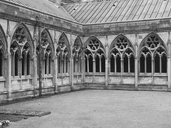 Cathedral cloister Lincoln (Wendy:) Tags: cloister mono cathedral lincoln