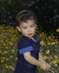 4090 DJ (greyhound rick) Tags: toddler child young innocent flowers scottsdale arizona nikon nikkor photoshop lightroom niksoftware sb800 strobe 2470mmf28 happy son solo youngboy boy lad tyke