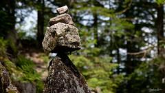 26052018-IMG_2283 (Steffan Photos) Tags: labresse grandest france fr randonnée vosges la bresse lac corbeaux bramont sechemer étang refuge union col vierge vieille montagne