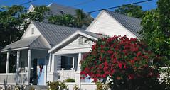 Key West (Florida) Trip 2017 0327Ri (edgarandron - Busy!) Tags: florida keys floridakeys keywest building buildings