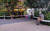 #152 modern isolation (tokyobogue) Tags: tokyo shibuya japan nexus6p nexus 365project people isolation phones trees bench