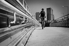 cycling in Vienna (heinzkren) Tags: sport schwarzweis blackandwhite bw sw monochrome panasonic lumix urban street streetphotography skyline skyscrapper radweg mann man radler radfahrer biker bicycle fahrrad wien vienna wienerberg brücke bridge railing geländer