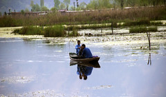 Reflecting on the Dal lake, Srinagar, Kashmir, India. (magiceye) Tags: reflections friends shikaras boat canoe dal lake srinagar kashmir india canon