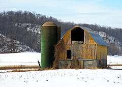 Decayed Yellow - Western Wisconsin (Steve O'Day) Tags: barn yellow rural farm farming decay green silo snow winter