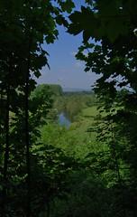 Ludlow 220518 - DSC_0617 (Leslie Platt) Tags: exposureadjusted straightened lookingnw shropshire birthdaytreat riverteme