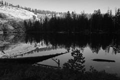 Jennie Lake, High Sierra (photography by Derek G) Tags: blackandwhite landscape mountains wilderness jennielake sequoia kingscanyon reflection forest highsierra backpacking camping hiking morning trees lake pine shadows light anseladams sunrise water
