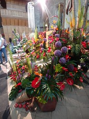 Festival of Flowers 2018, Chichester Cathedral (f1jherbert) Tags: lgelectronicslgh870 lgg6 lgh870 lgelectronics lgg6electronics lgg6h870 lg g6 h870 electronics festivalofflowerschichestercathedral festival flowers flower festivalofflowers chichestercathedral flowerschichestercathedral