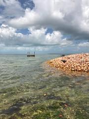 Conch pile (Daniel Piraino) Tags: shotoniphone bahamas grandbahama sea sky clouds iphoneography