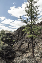 SedonaVacation_May2018-3188 (RobBixbyPhotography) Tags: arizona flagstaff sedona sunsetcrater vacation nationalmonument volcano travel