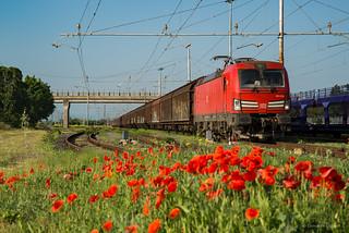 E191 016 DB CARGO ITALIA -RIVALTA SCRIVIA