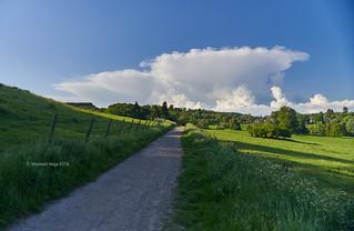 Towards the mushroom cloud (I)