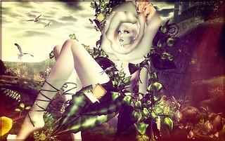 ╰☆╮Wonderland Crazy Rose.╰☆╮