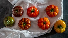2018_05_still_life_heirloom_tomoatos_3356 (PattyHankins) Tags: stilllife heirloom tomatoes