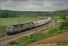 Espinosa de Henares. (pazalberto269) Tags: diésel low cost rail tren trainspotting photography power maersk teco spain spring nikon