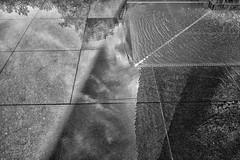 (Tomošius) Tags: chicago illinois usa ©tomaspetkus2018 tomaspetkus 42dward downtown fujifilmxpro2 fujinonxf18mmf2 street streetphotography documentary city urban bw candid weird straight millenniumpark michiganave park noiretblanc blackandwhite crownfountain jaimeplensa