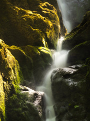 Dappled light at Catrigg Trickle [sic] (urfnick) Tags: canon eos 1300d tamron nature landscape outdoors yorkshire dales nationalpark longexposure le rocks sunlight summer dappled sundaylights moss green flow splash sun
