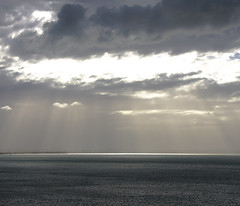 13 apr 2018 - photo a day (slava eremin) Tags: dailyphoto 365 1day photoaday auckland nz newzealand sea gulf sun clouds