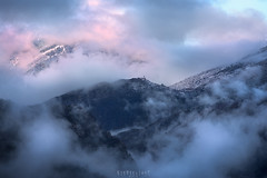 Cotton candy (Ron Jansen - EyeSeeLight Photography) Tags: france spring mercantour national park blue pink morning fog clouds mist mood mountain light snow trees tree fluffy cotton candy