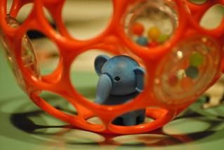 Elephants don't do Hamster wheels !!