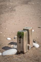 Wood and Stone (Bogtramp) Tags: wood kpkphotography shingle nikon east water rocks beach d500 yorkshire kitching worn coastal chalk sky sand flamborough coast uk sea