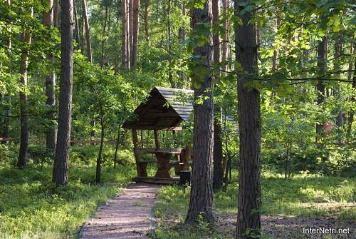 Шацький Національний Природний Парк Озеро Луки Перемут InterNetri  Ukraine 22