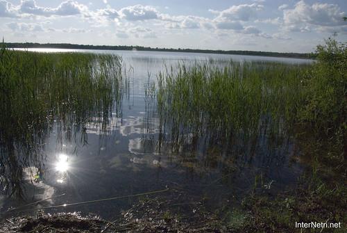 Шацький Національний Природний Парк Озеро Луки Перемут InterNetri  Ukraine 10