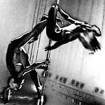 Pole Dancers ¬ 0186 thumbnail